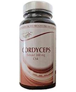 Tinh chất Đông trùng hạ thảo CORDYCEPS Extrakt 500mg của Đức, 100 viên