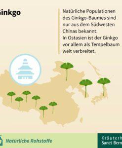 Viên uống bổ não Sanct Bernhard Ginkgo Kapseln 75mg, 240 viên